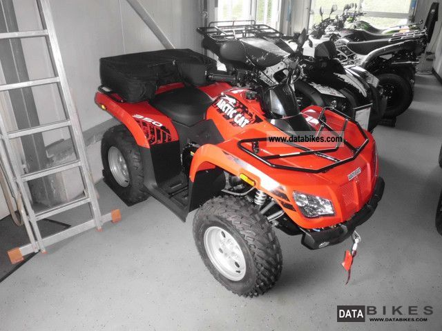 Arctic cat 350 photo - 7