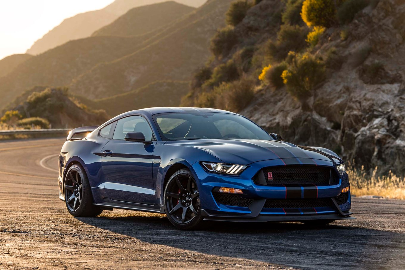 Ford shelby photo - 5