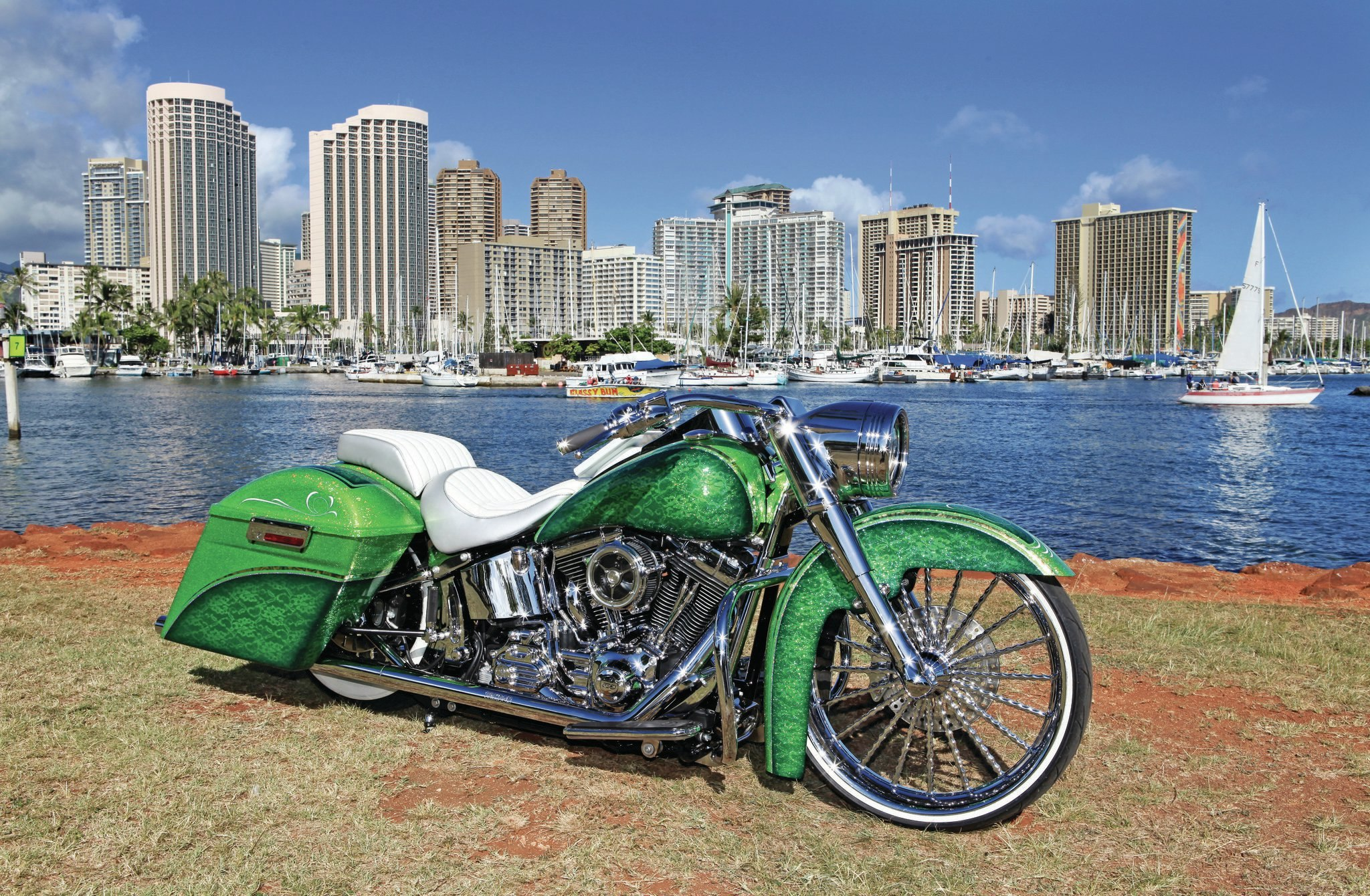 Harley-davidson custom photo - 7