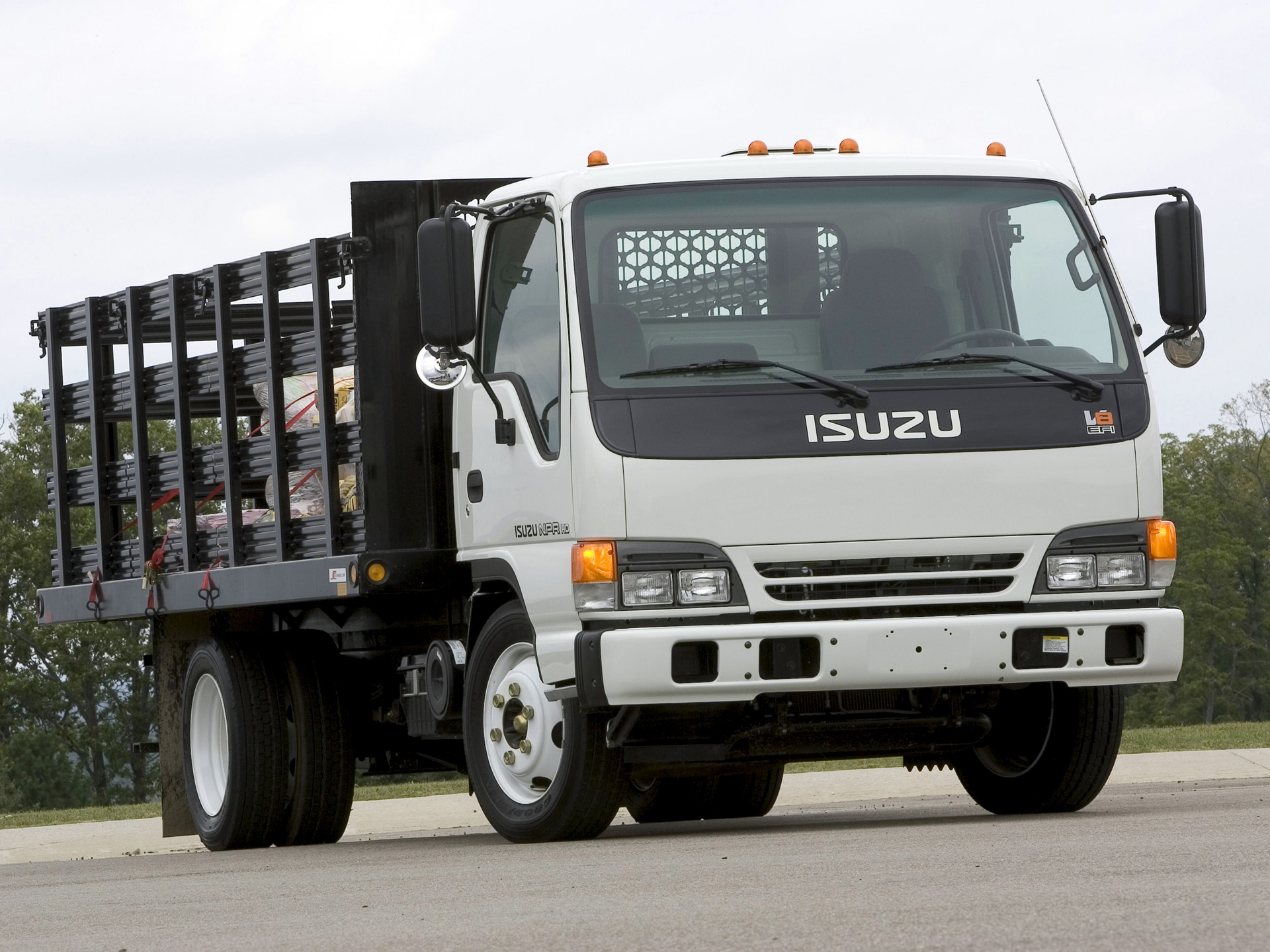 Isuzu n-series photo - 9