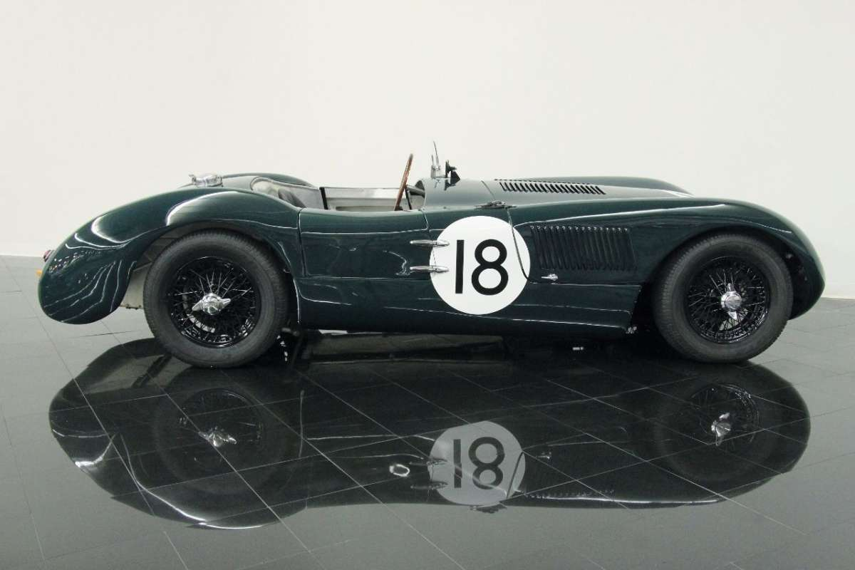 Jaguar c-type photo - 10