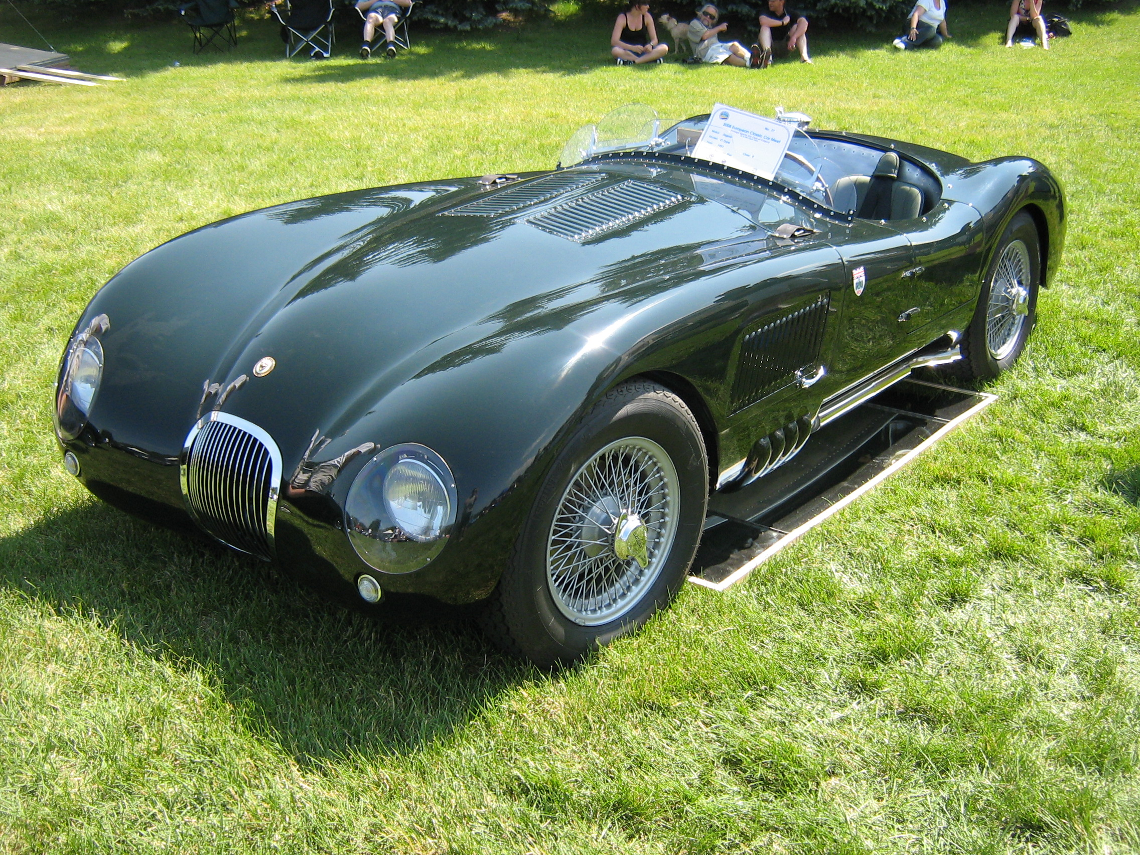 Jaguar c-type photo - 6