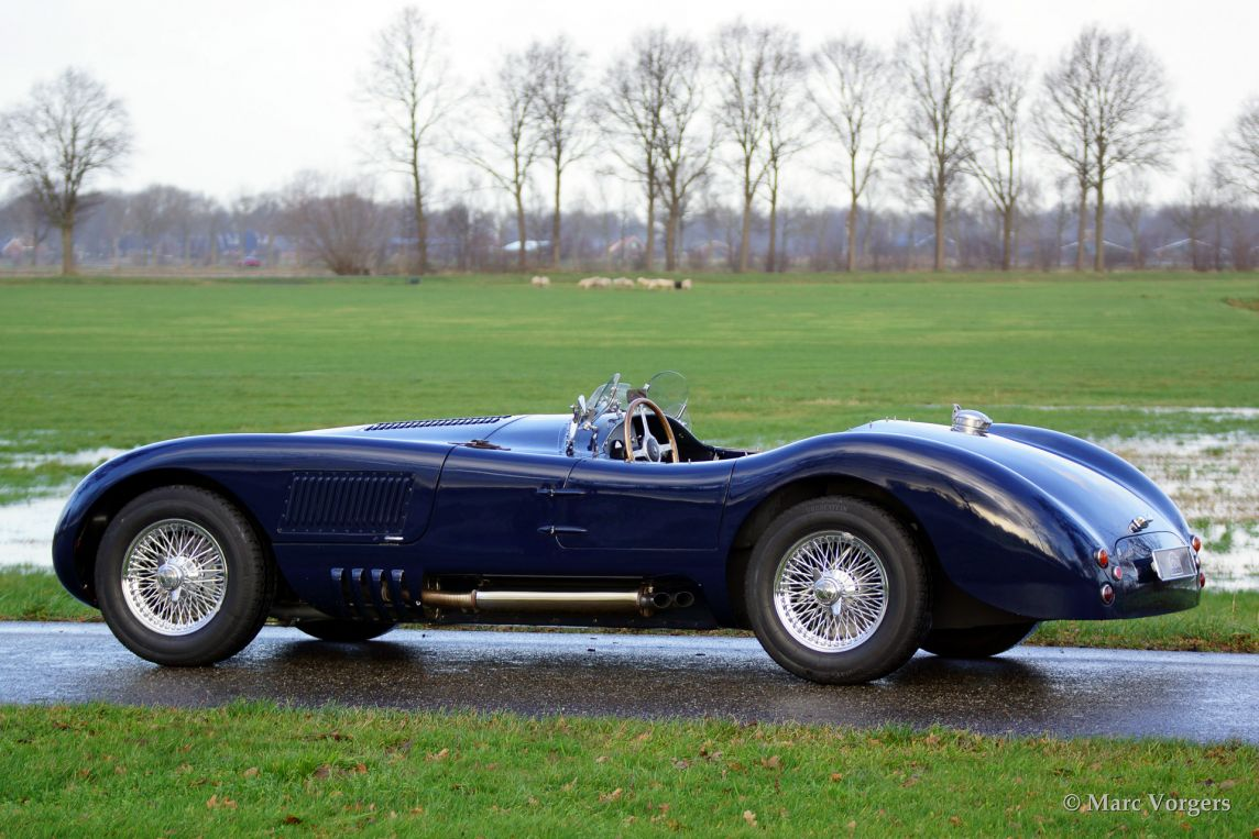 Jaguar c-type photo - 8