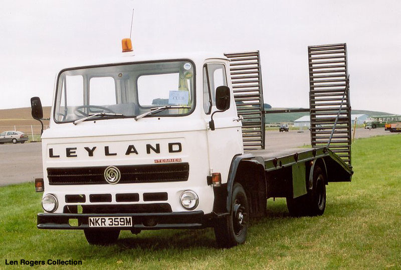 Leyland terrier photo - 1