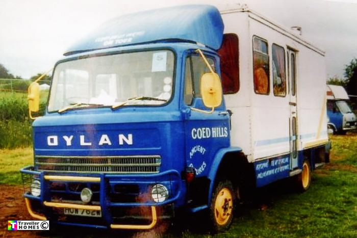 Leyland terrier photo - 8