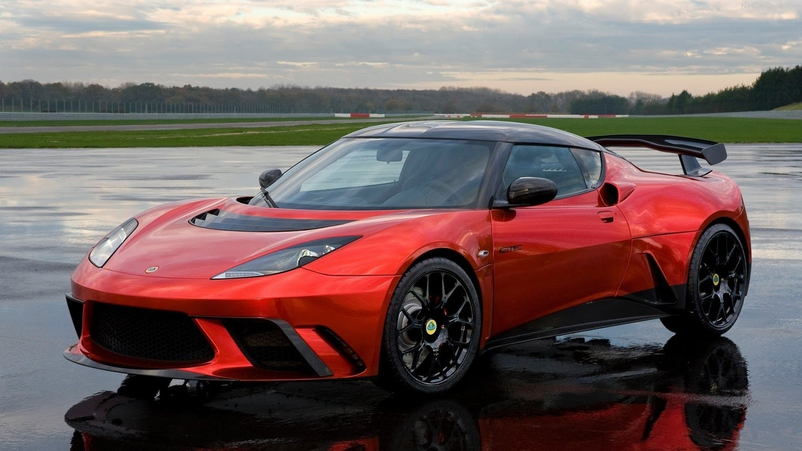 Lotus evora photo - 1