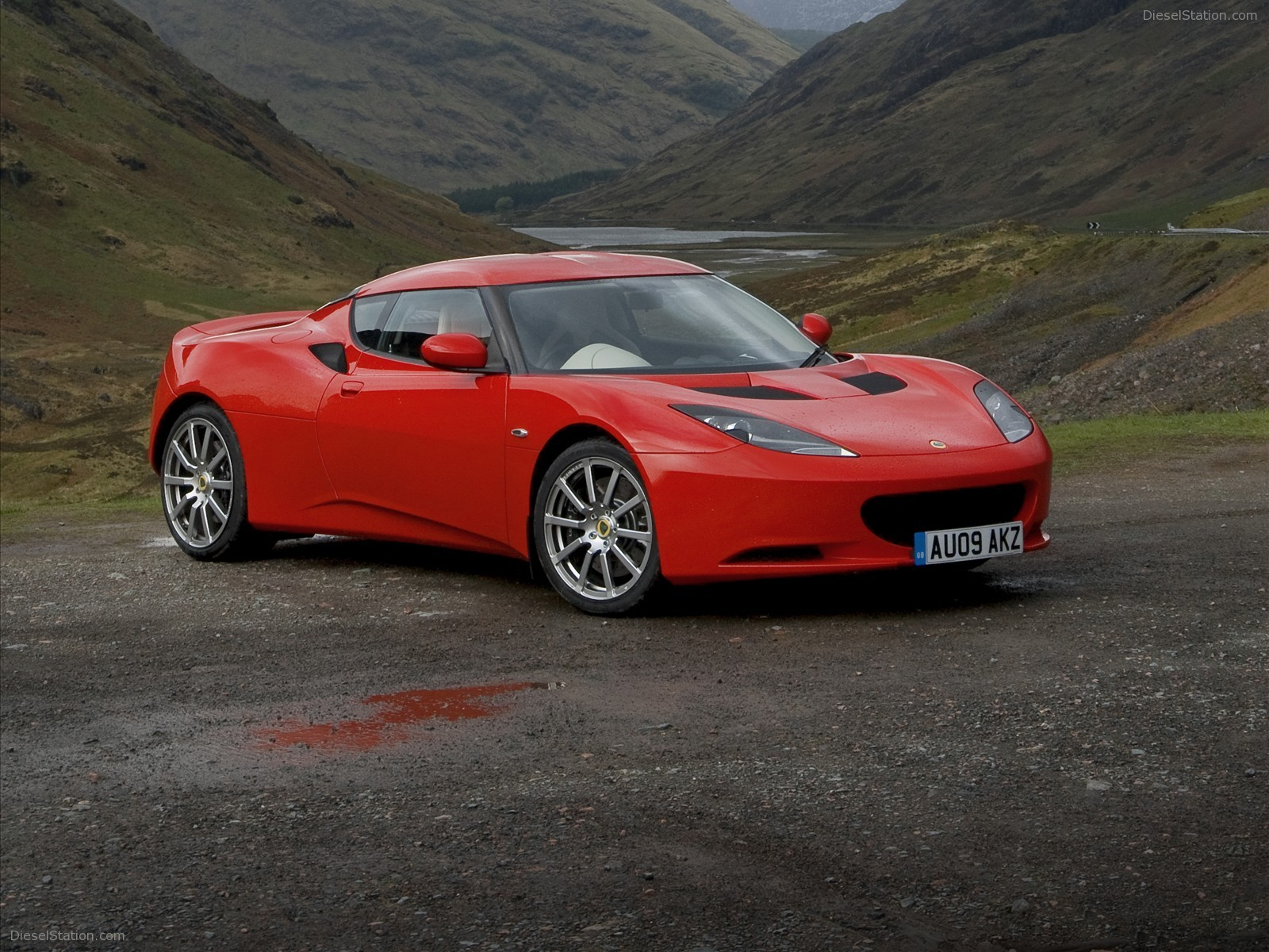 Lotus evora photo - 4