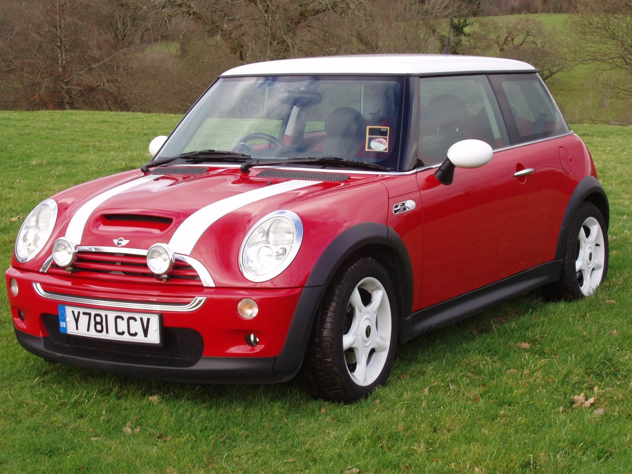 Mini red photo - 1