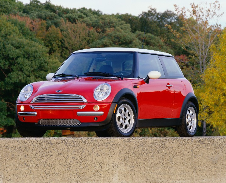 Mini red photo - 3