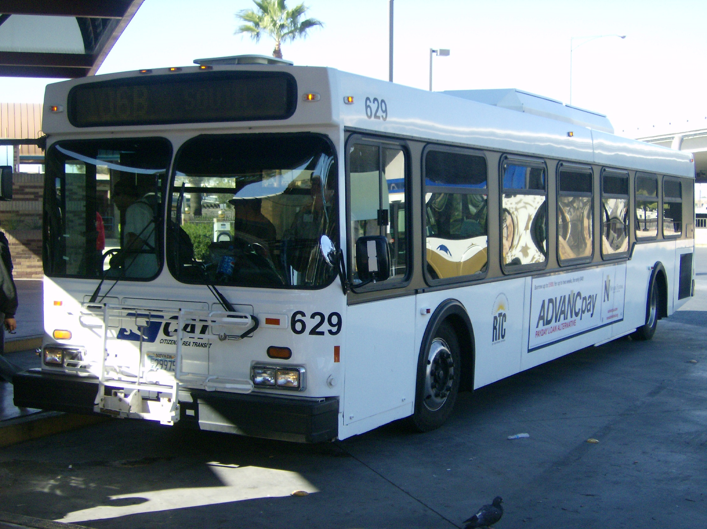 New flyer d40lf photo - 3