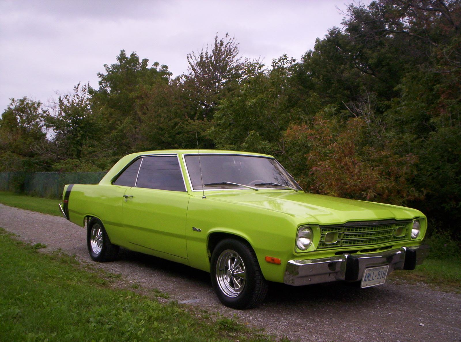 Plymouth scamp photo - 2