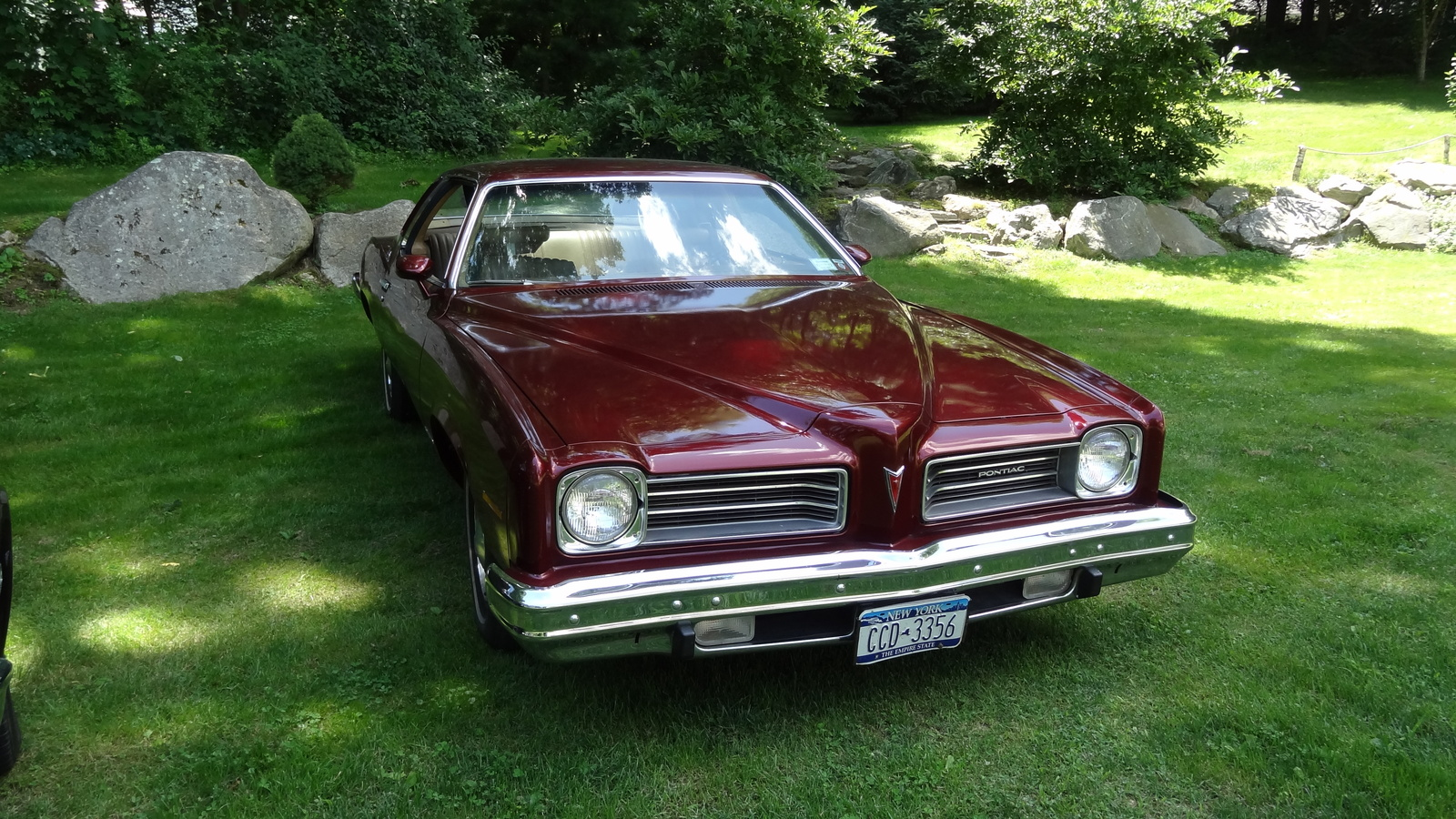 Pontiac le photo - 1