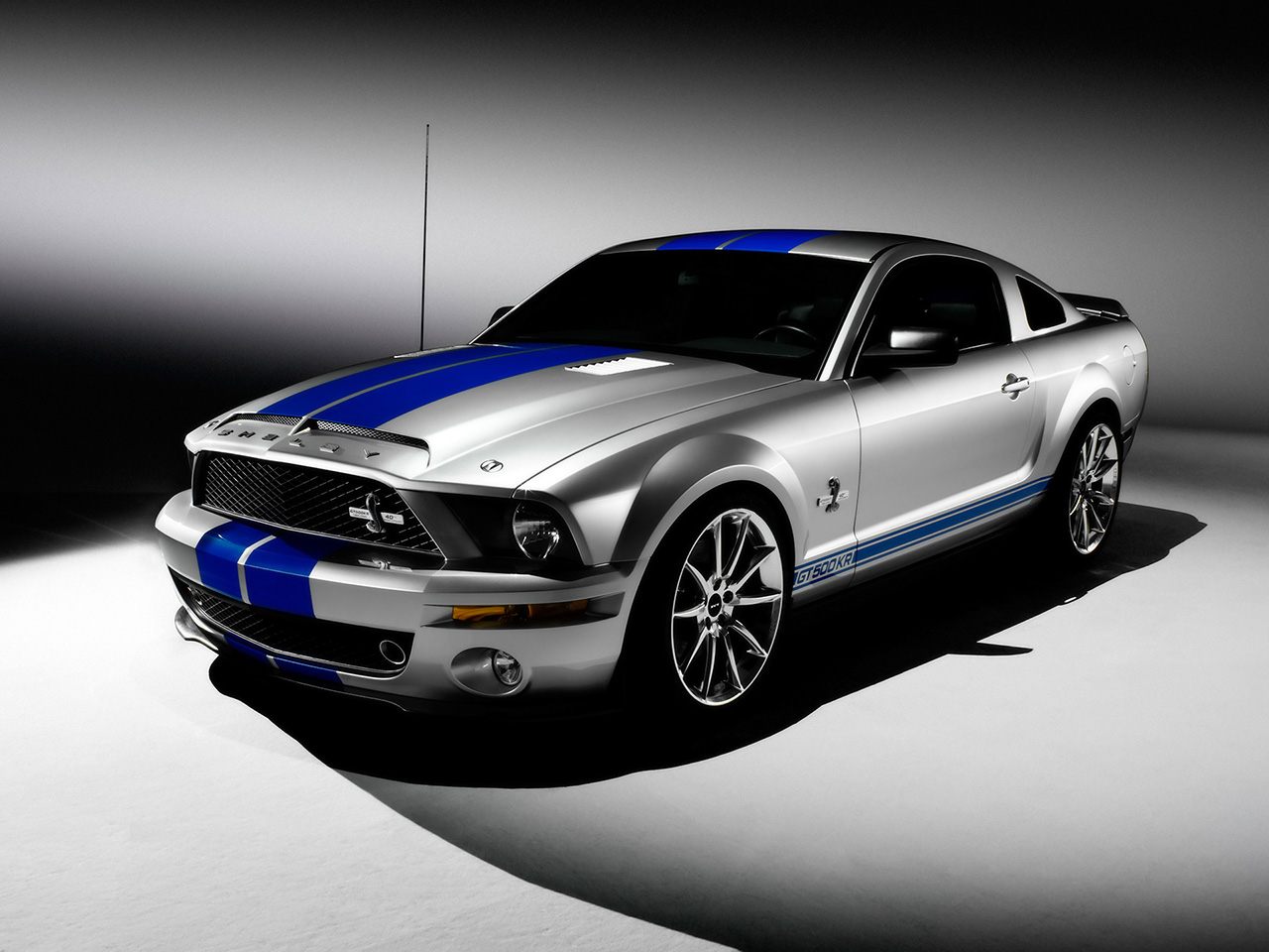 Shelby gt photo - 3