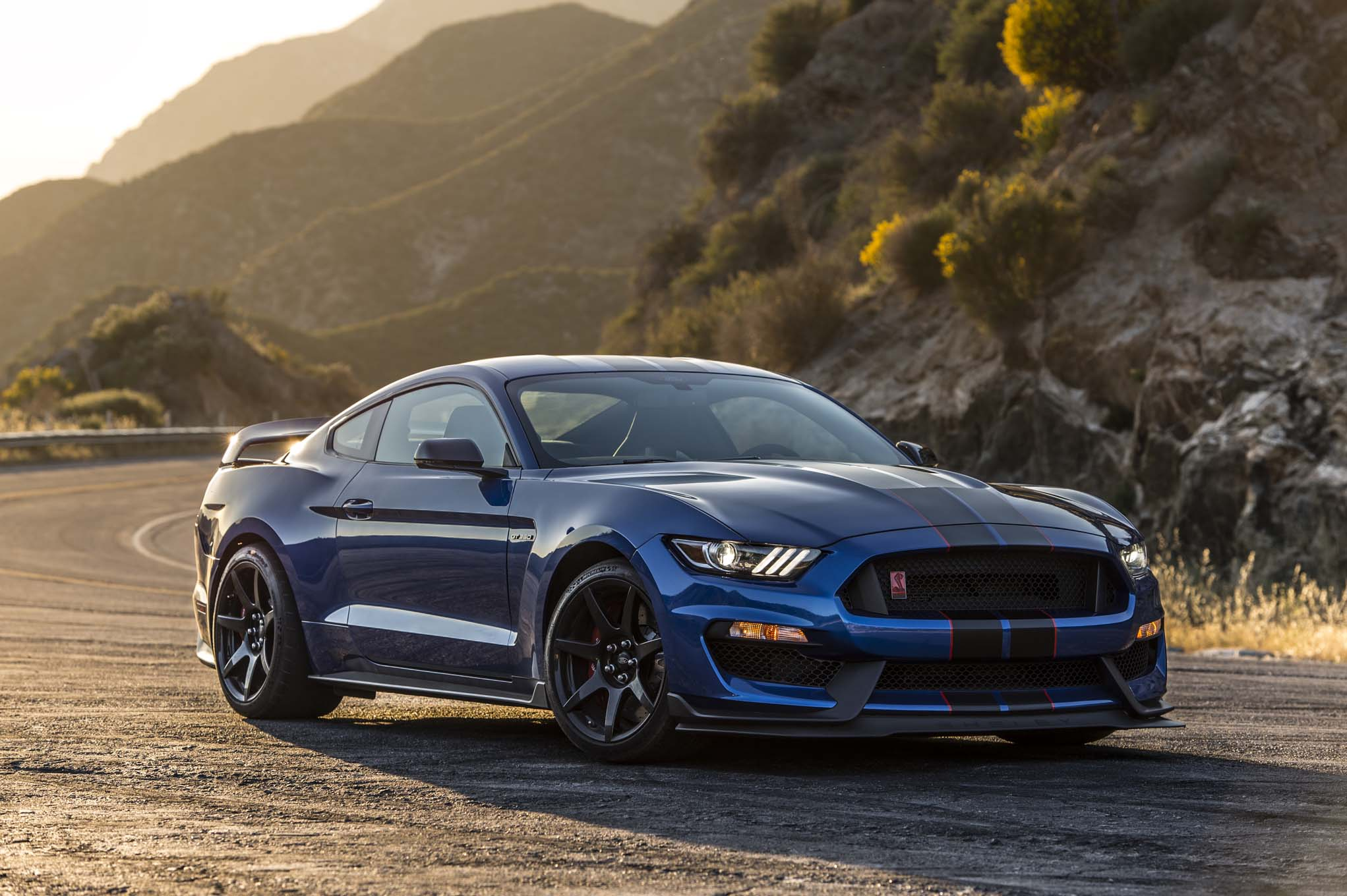 Shelby gt photo - 9