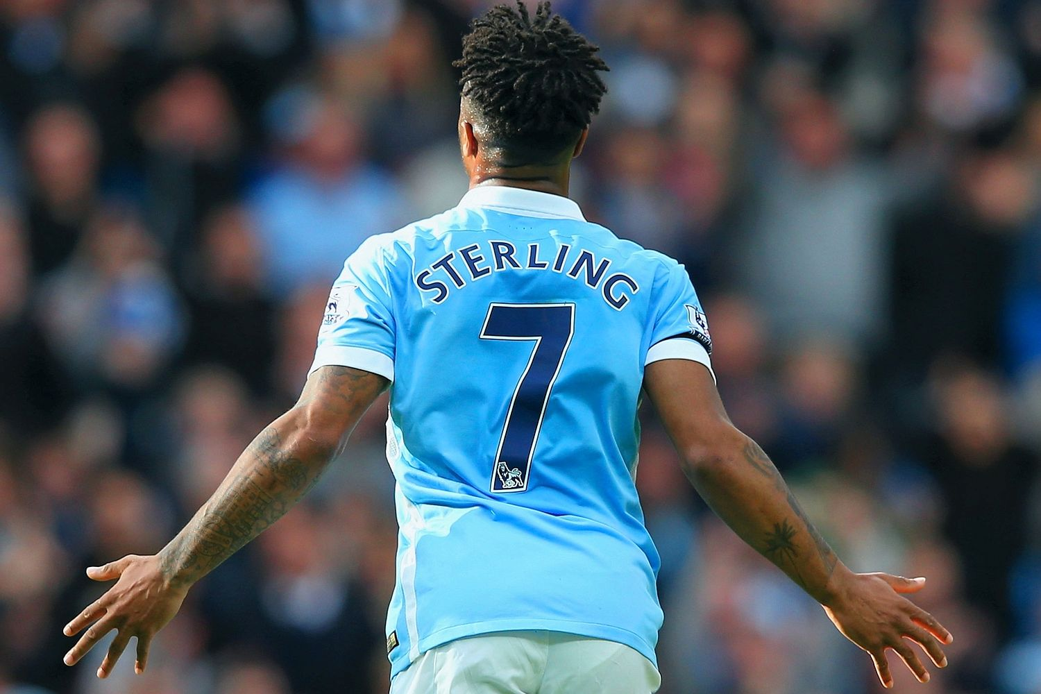 Sterling at photo - 9