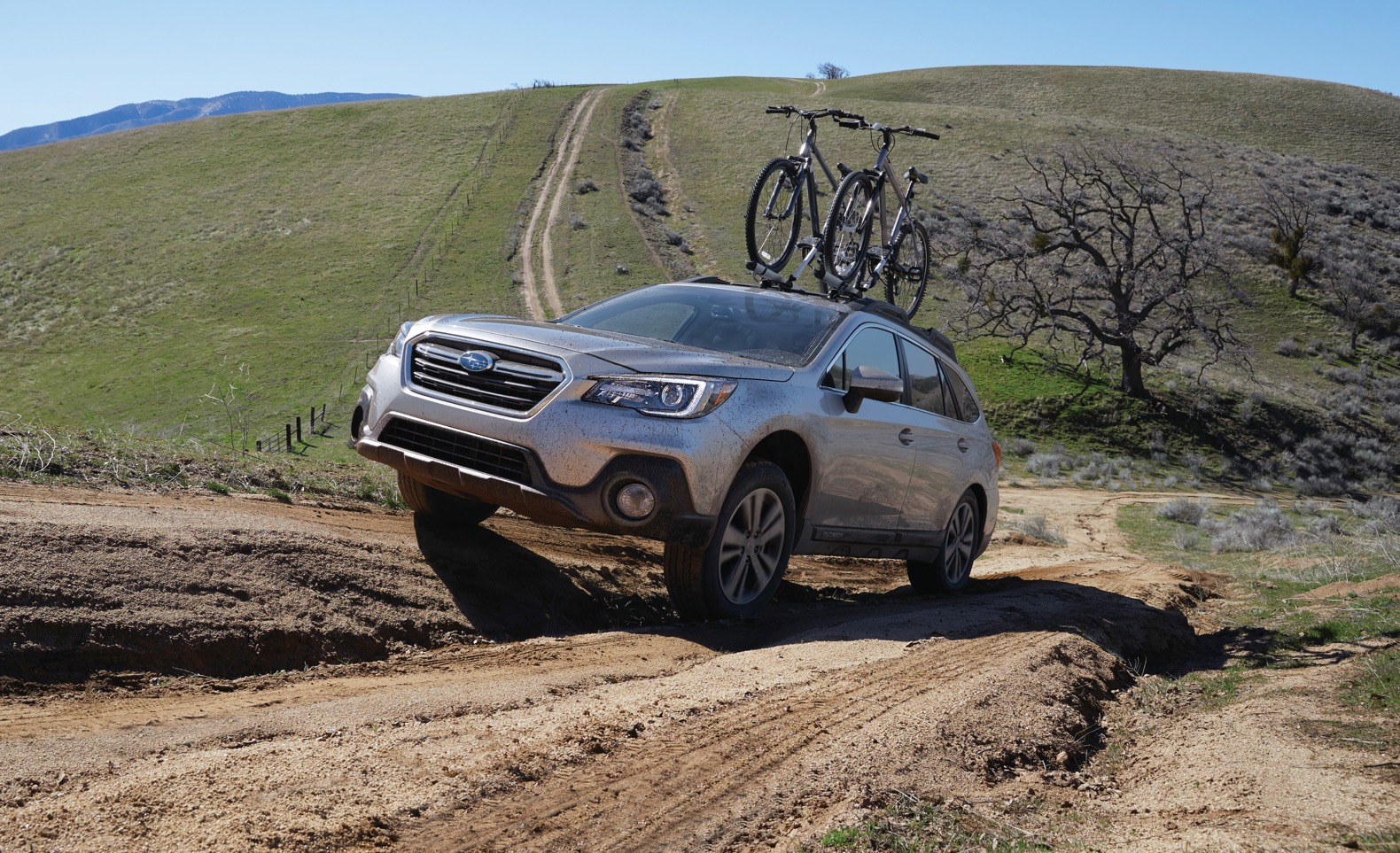 Subaru outback photo - 3
