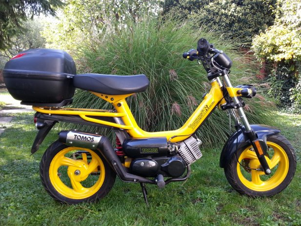 Tomos youngst photo - 1
