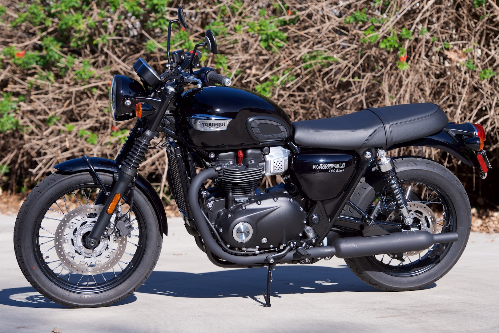 Triumph bonneville photo - 5