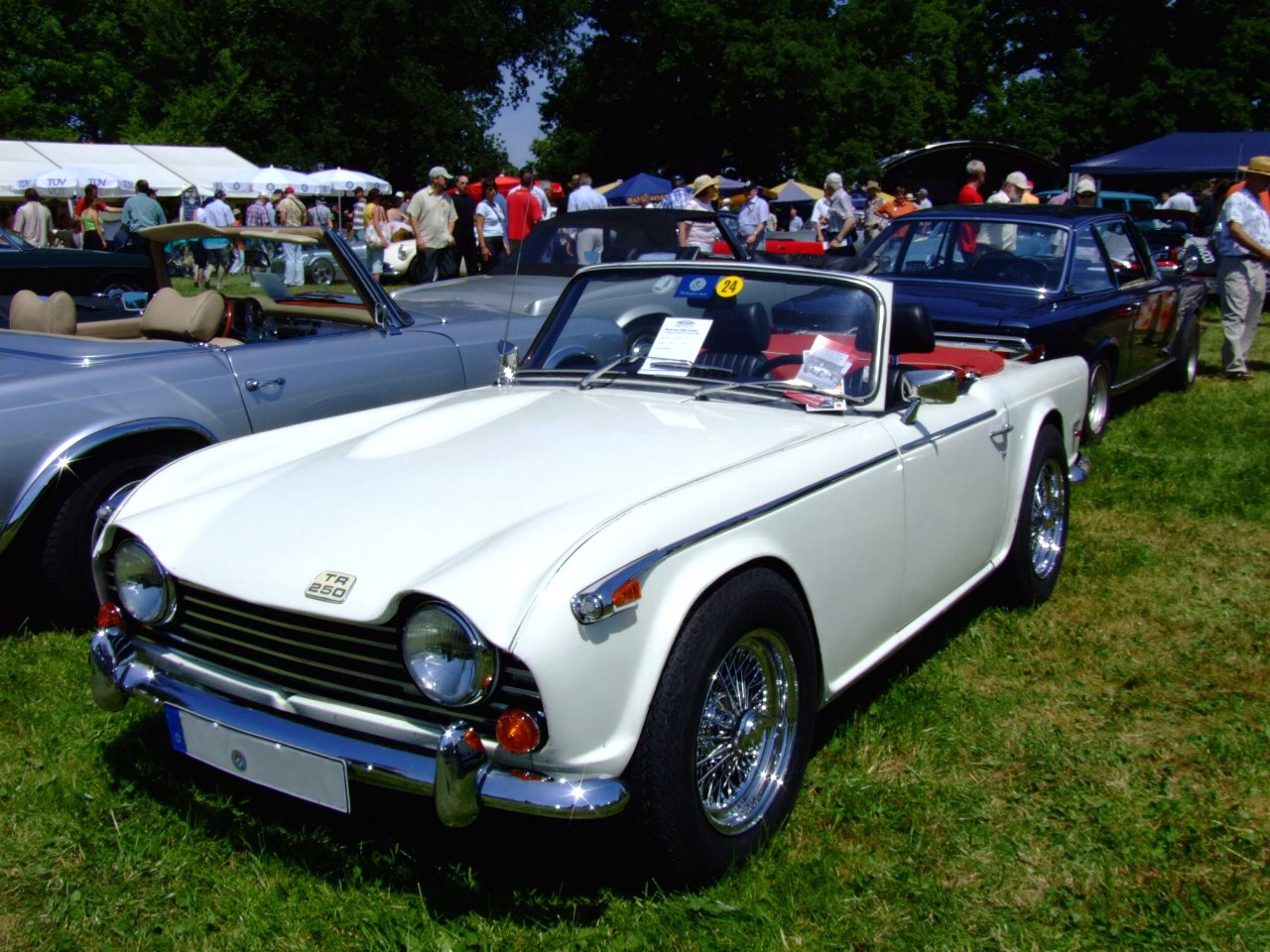 Triumph tr250 photo - 8
