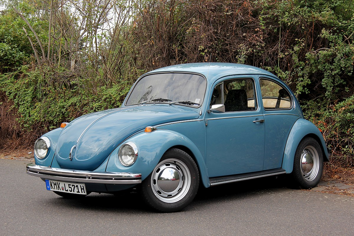 Volkswagen bug photo - 1