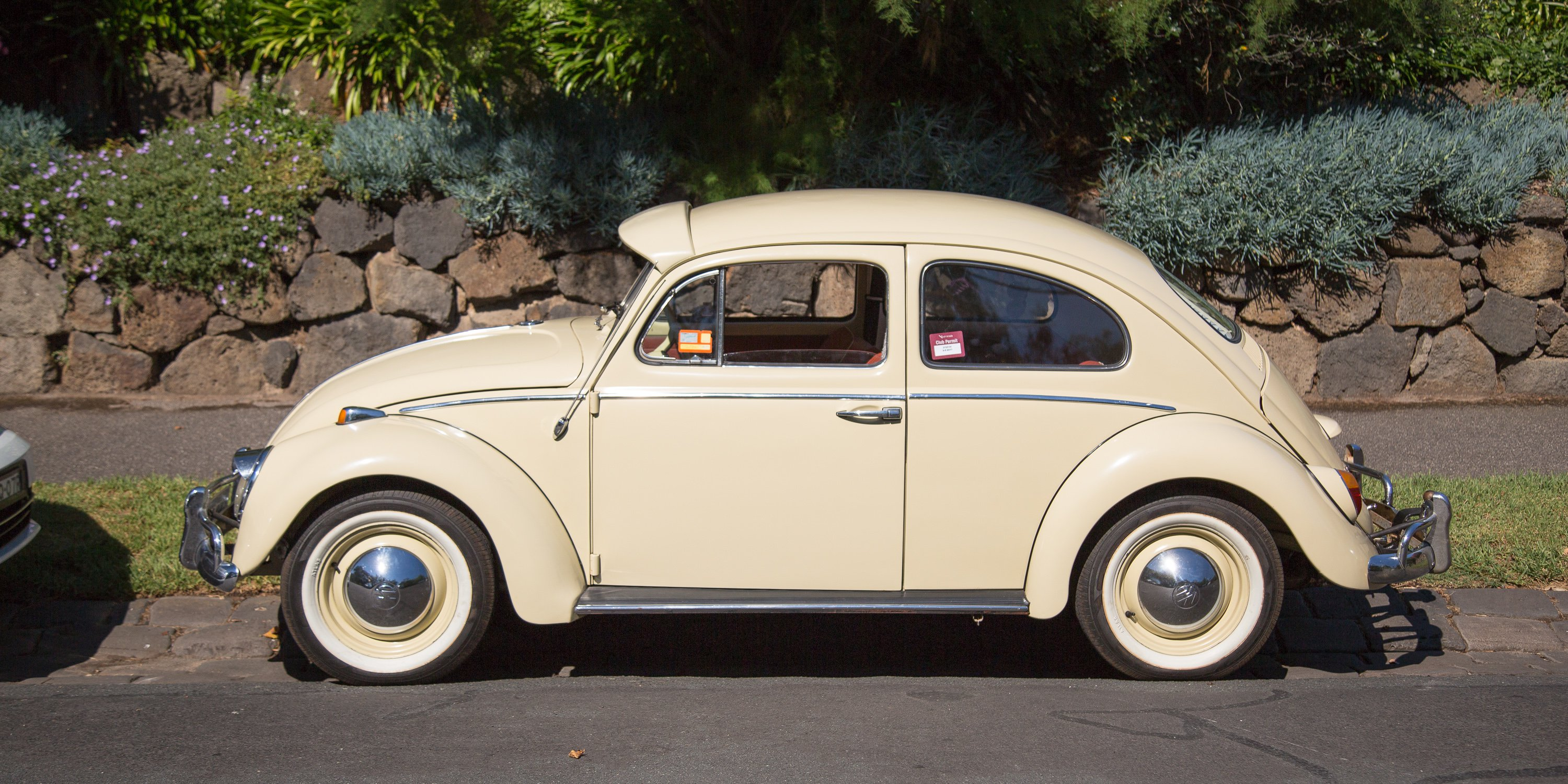 Volkswagen bug photo - 4