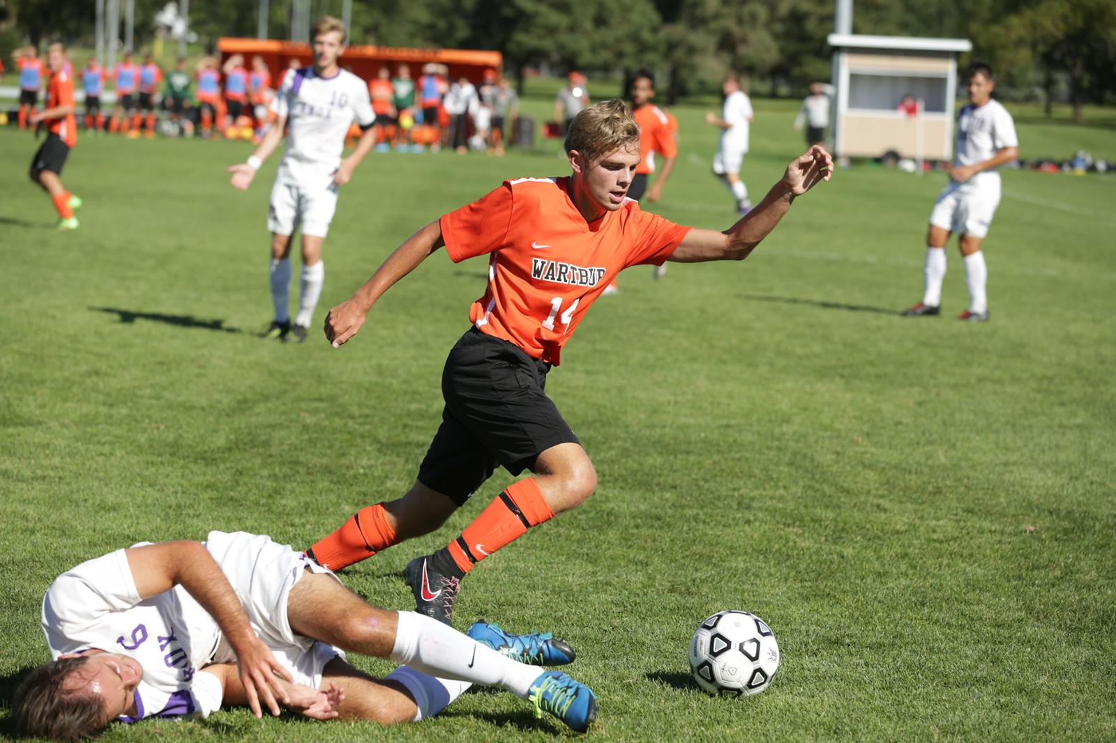 Wartburg sports photo - 1