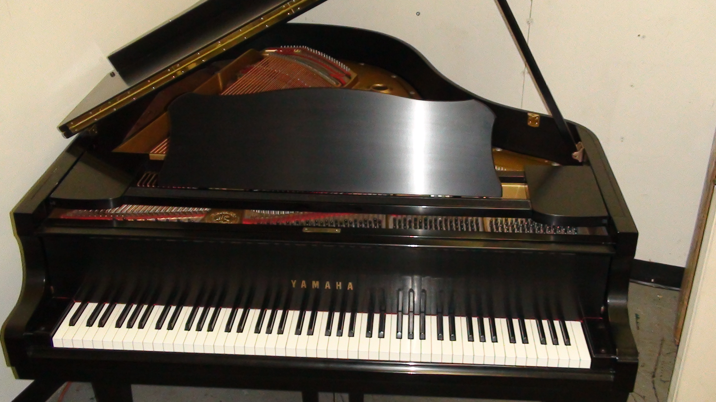Yamaha g2 photo - 1