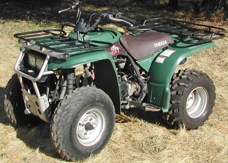 Yamaha timberwolf photo - 9